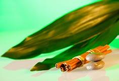 Aromatherapy και σύνθεση SPA Στοκ φωτογραφία με δικαίωμα ελεύθερης χρήσης