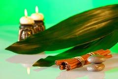 Aromatherapy και σύνθεση SPA Στοκ εικόνα με δικαίωμα ελεύθερης χρήσης