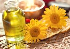 Aromatherapy και σύνολο SPA Στοκ εικόνες με δικαίωμα ελεύθερης χρήσης