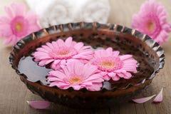 aromatherapy λουλούδια κύπελλων Στοκ φωτογραφία με δικαίωμα ελεύθερης χρήσης