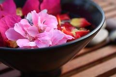 aromatherapy λουλούδι κύπελλων Στοκ εικόνα με δικαίωμα ελεύθερης χρήσης