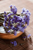 aromatherapy λουλούδι Στοκ Φωτογραφίες