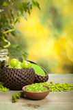 aromatherapy μεταλλεύματα Στοκ φωτογραφία με δικαίωμα ελεύθερης χρήσης