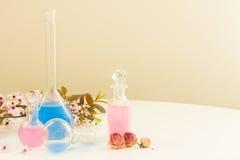 Aromatherapy - ξηρές λουλούδια και φίλτρα Στοκ φωτογραφίες με δικαίωμα ελεύθερης χρήσης