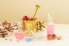 Aromatherapy - ξηρές λουλούδια και φίλτρα Στοκ εικόνες με δικαίωμα ελεύθερης χρήσης