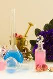 Aromatherapy - ξηρές λουλούδια και φίλτρα Στοκ Εικόνα