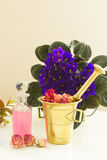 Aromatherapy - ξηρές λουλούδια και φίλτρα Στοκ Φωτογραφίες