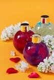 aromatherapy ουσιαστικά πετρέλαια Στοκ Φωτογραφία
