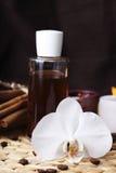 aromatherapy πετρέλαια οργανικά Στοκ Φωτογραφίες