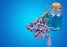 aromatherapy πετρέλαιο Στοκ Εικόνα