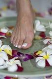 aromatherapy πόδι λουτρών Στοκ φωτογραφίες με δικαίωμα ελεύθερης χρήσης