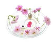 aromatherapy ροζ λουλουδιών Στοκ Εικόνα