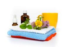 aromatherapy σύνολο μασάζ Στοκ φωτογραφίες με δικαίωμα ελεύθερης χρήσης