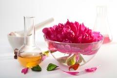aromatherapy σύνολο Στοκ Εικόνες