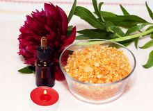 aromatherapy σύνολο Στοκ φωτογραφία με δικαίωμα ελεύθερης χρήσης