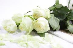aromatherapy τριαντάφυλλα Στοκ Φωτογραφία