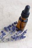 aromatherapy лаванда Стоковые Изображения RF