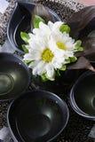 aromatherapy масло Стоковое Изображение RF