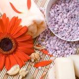 aromatherapy обработка красотки Стоковые Фотографии RF