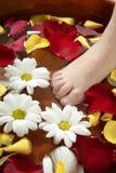 aromatherapy浴英尺花瓣上升了 免版税库存图片