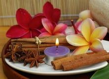 Aromatherapy Royalty Free Stock Photos