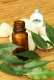 aromatherapy油 免版税库存图片