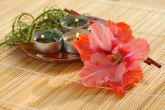 Aromatherapy stockfotos