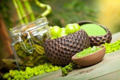 aromatherapy зеленая спа минералов стоковые фото
