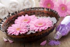Aromatherapy stock foto's