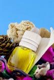Aromatherapy Стоковые Изображения RF