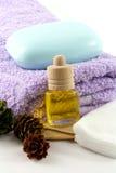 Aromatherapy Arkivfoto