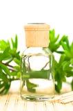 Aromatherapy Royalty-vrije Stock Fotografie