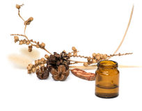 Aromatherapy Royalty Free Stock Photo
