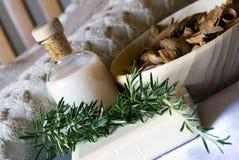aromatherapy迷迭香集合温泉 免版税库存图片
