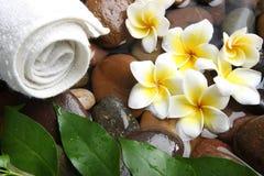 Aromatherapy Badekurort Stockbild