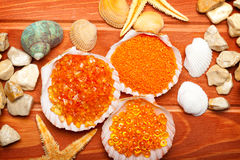 Aromatherapy - bath salt and sea shell Stock Photos