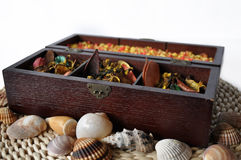 Aromatherapy box with seasehells Royalty Free Stock Images