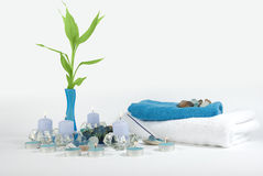 aromatherapy brunnsort Royaltyfri Fotografi