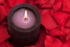 Aromatherapy candle and rose petals. Candle surrounded with red rose petals Royalty Free Stock Photo
