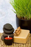 Aromatherapy candle and spa items. Various spa and massage items with wheatgrass Stock Photo