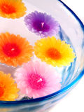 Aromatherapy candles. In a bowl with water Royalty Free Stock Photo