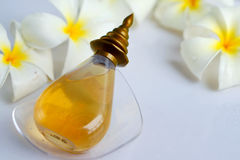 Aromatherapy concept with fresh frangipani flower royalty free stock image