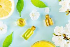 Aromatherapy de la primavera con la fruta cítrica y aceites esenciales Imagen de archivo libre de regalías