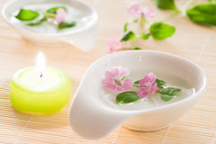 Aromatherapy details Stock Photos