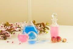 Aromatherapy - droge bloemen en drankjes stock foto's