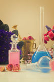 Aromatherapy - dry flowers and potions Stock Photography