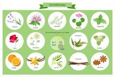 Aromatherapy - ejemplo stock de ilustración