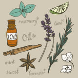 Aromatherapy elements vector set. Aromatherapy, spa and wellness essential oils doodle vector illustration set Stock Photos