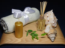 Aromatherapy en balneario con la toalla, la hoja verde y la cáscara imágenes de archivo libres de regalías