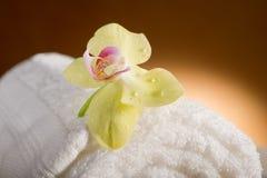 Aromatherapy en kuuroord stock fotografie